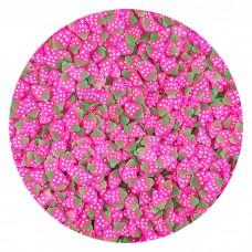 Raspberry pink slice 10g