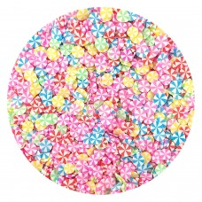 Rainbow lollipops 10g